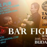 Bar Fight Seminar in Budapesta