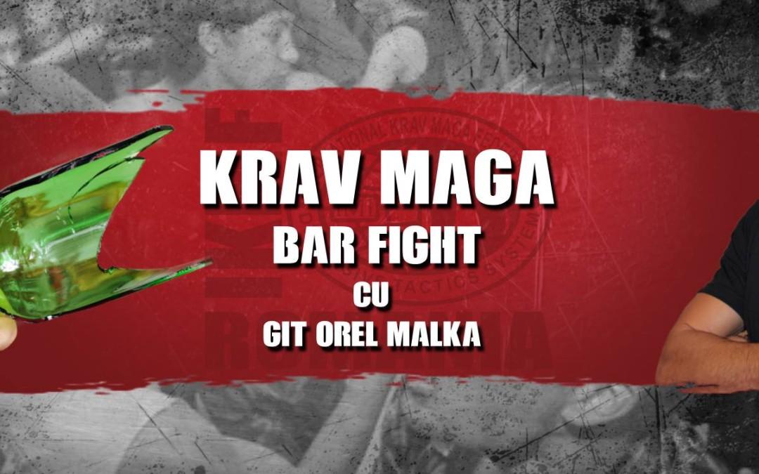21 Ianuarie 2017, Bar fight seminar în București